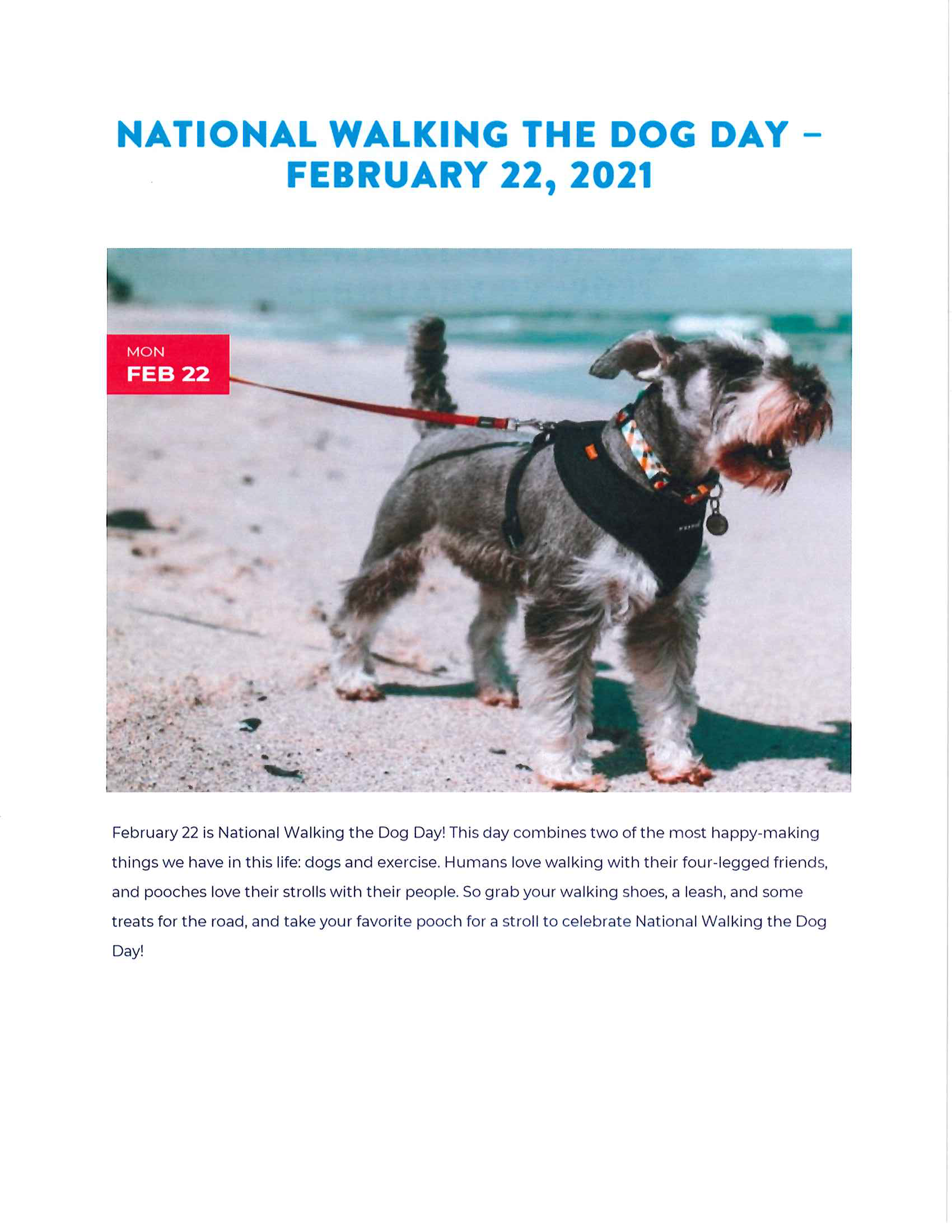 February-National Walking the Dog Day.pdf
